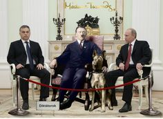 Absolute Power, Political Leaders, Lol, Humor, Funny, People, Heavens, Humour, Funny Photos
