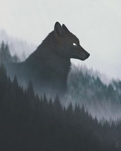 Rumors of Northrend - Anime Wolf Anime Wolf, Fantasy Creatures, Mythical Creatures, Fenrir Tattoo, Werewolf Tattoo, Werewolf Art, Animal Drawings, Art Drawings, Wolf Wallpaper