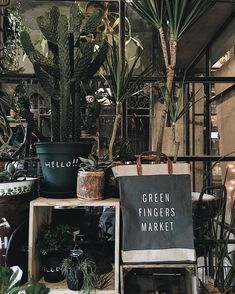 Green Fingers Market bag with plants ・ ・ ・ Cacti And Succulents, Potted Plants, Plant Pots, Bamboo Ladders, Garden Bags, Interior Garden, Market Bag, Boutique, Garden Design