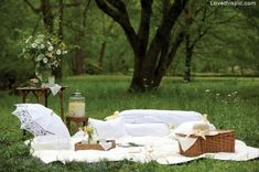 Picnic for two love cute outdoors nature trees country romance