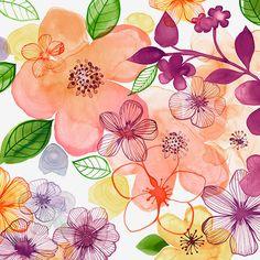 Margaret Berg Art : Illustration : florals / plants / spring ❤ liked on Polyvore featuring home, home decor, wall art, backgrounds, floral home decor, spring wall art, floral wall art, spring home decor and flower illustration