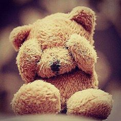 Teddy bear || Cute Profile picture for facebook