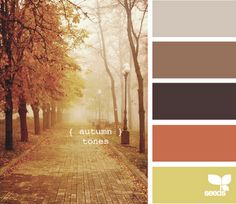 """autumn tones"""