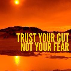 Trust your #gut not your #fear #quote https://www.facebook.com/InspirationByAnja