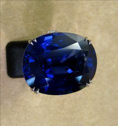 00641 Ring 55.05ct Sapphire Ring.jpg (1023×1100)