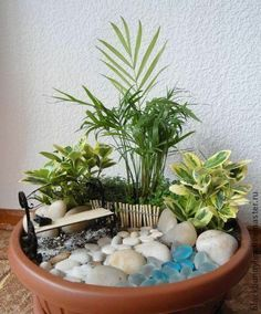 Miniature Garden in a Pot | visit livemaster ru