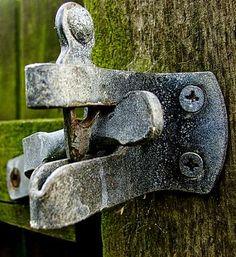 Pruning Shears, Garden Tools, Color Schemes, Door Handles, Gray Color, Home Decor, Grey, R Color Palette, Door Knobs