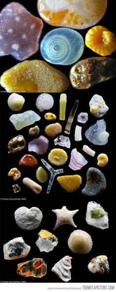 Sand under a microscope. You will never look at sand the same way ever again :)
