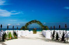 A tropical Wedding Arch