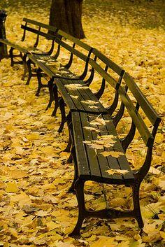 Central Park, New York City fall inspiration #Jcrew #MyShoeStory