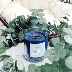 Add a little mystery to your morning coffee sesh with a Jackpot Candle! Candle Wax, Soy Wax Candles, Scented Candles, Jewelry Candles, Aesthetic Art, Morning Coffee, Mystery, Cozy, Business