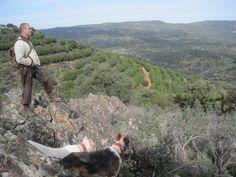 La finca Valquemado en Jaén, la segunda mejor montería en abierto de toda España