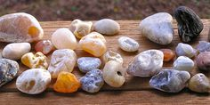 A haul of Gleneden Beach agates! The black rock is petrified wood.