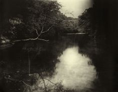 1998- Sally Mann landscapes = I've poured over them since I was in high school and they still take my breath way.                                                                                                                                                                                 More