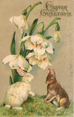 Hallmark Sac cadeau de P/âques /« Chasse aux /œufs /» lapin, printemps Petit