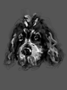 Dillon 'painted' in BrishesApp. Mans Best Friend, Best Friends, Four Legged, Brushes, Berry, Paintings, App, Dogs, Animals