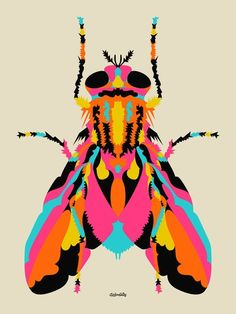 We dig colorful insects