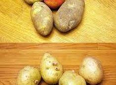 Máme-li uskladněné brambory, dříve či později začnou klíčit. A často nepomůže ani to, že jsou v chladu a tmě. Lze tomu zabránit tak, že k bramborám přidáme jedno nebo více jablek (podle množství brambor).