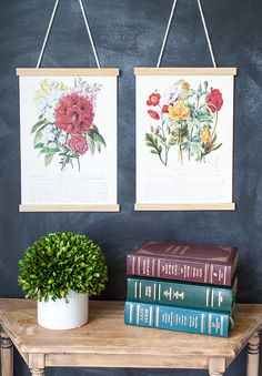 Chris over at Just A Girl found 2 framed prints at her Thrift Shop and she immediately had a vision…I think it worked out beautifully…what she had in the end were two beautiful Botanical Prints (hot trend) but with an updated…new and fresh look. Once you see how she did it…keep your eyes peeled for …
