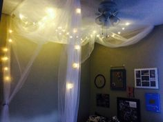 Canopy bed with ceiling fan!