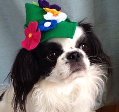 Dog Hat Flowered Peter Pan Style Small by Doginafez on Etsy
