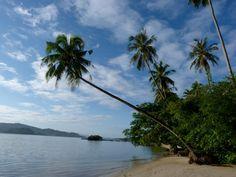 https://flic.kr/p/afGPru | 001 Tropisch Paradijsje