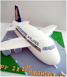 a really cool singapore airlines cake
