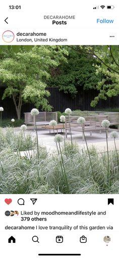 Outdoor Furniture Sets, Outdoor Decor, Garden Design, Plants, Landscape Designs, Plant, Planets, Yard Design