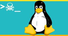5 Deadly Linux Commands You Should Never Use