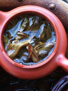 Royal Phoenix Honey Orchid Dan Cong unfurled