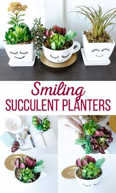 Smiling DIY Succulant Planters Make your succulents stand out with these adorable Smiling DIY Succulent Planters. Easy to make and fun to display, these planters would even make a fun gift. Succulent Planter Diy, Succulent Gifts, Diy Planters, Succulents Garden, Planting Flowers, Succulent Display, Hanging Planters, Painted Flower Pots, Painted Pots