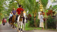 Horse Riding Bali – Pantai Saba