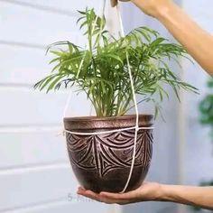 Diy Crafts Hacks, Diy Home Crafts, Garden Crafts, Garden Projects, Plant Crafts, House Plants Decor, Plant Decor, Home Plants, Air Plant Display