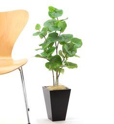 光触媒人工観葉樹 3109「シーグレープ 80cm(木製 鉢付)」