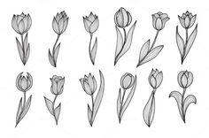 Roses and Tulips Set by Chantall on Creative Market Roses and Tulips Set by Chantall on Creative Mar Mini Tattoos, Dream Tattoos, Future Tattoos, Flower Tattoos, New Tattoos, Body Art Tattoos, Small Tattoos, Cool Tattoos, Tatoos