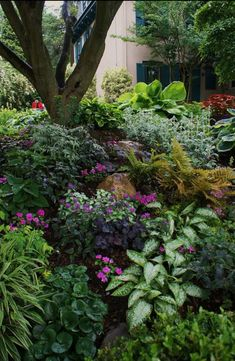 Too busy but great ideas for greenery that grows in the shade. Yard Landscaping, Courtyard Landscaping, Gardening