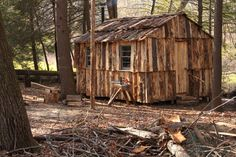 Cabin built of slab wood by Dave Sinaguglia near Hartford, CT