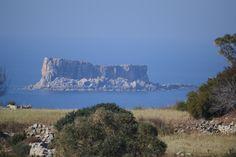 Filfla Island, Malta Malta Gozo, Malta Island, Little Island, Archipelago, Maltese, Sicily, Continents, Adventure Travel, Monument Valley
