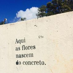 """5,235 curtidas, 4 comentários - @olheosmuros no Instagram: """"#Repost @kikapinheiro ・・・ Brasília, DF. #bsb #olheosmuros #paredesurbanas #artederua #ceuazul"""""""