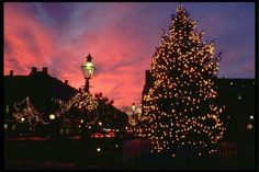 """""""Christmas in Old Town Alexandria, Virginia -- Holiday Tree Sunset and Lights"""" -- Click through for a photo tour."""