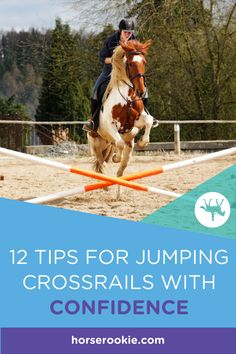"""Watching professional show jumpers and eventers is exciting. It's easy to assume these horses and riders were """"naturals"""" and magically knew how to clear fences (and look good doing it) from day one. In reality, every rider—and horse—started with ground poles and crossrails.  #horsejumping #horsejumpingtips #horsecrossrails #horsejumpingcrossrails #horserookie"""