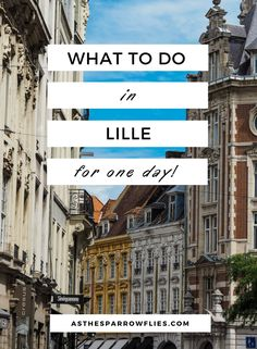 Lille In One Day   Day Trip To Lille   Lille on Eurostar   European City Break   Visit France