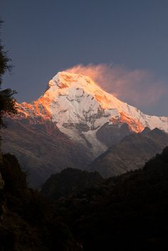 (Another sun rise over the Annapurna range )