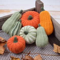 Decorative Pumpkins - Round from