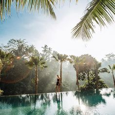 Dreaming of being in this tropical paradise right about now, when in reality it's after 3am and we are just checking into an airport hotel in Malaysia... looks like our visas for Vietnam aren't going to process in time to make our flight that was supposed to leave in a few hours, so we have to find a later one! 🙈😬 Vietnam, we are coming for you SOON... we hope!! 💙 // #jungliefish #balilife #chapungsebali #TheTravelLeague