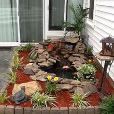Backyard waterscaping, so soothing!