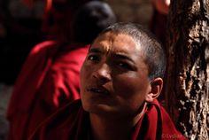 Tibetan monk in Sera Monastery