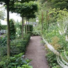 Danish garden path