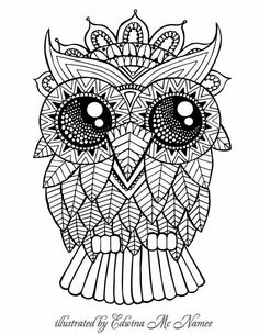adult coloring books by unibul press we love coloring color this cute owl - Owl Images To Color