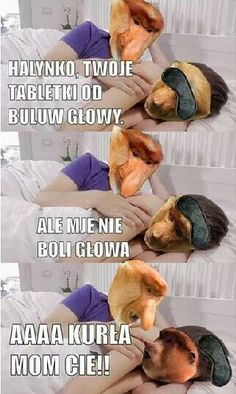 Best Memes, Funny Memes, Polish Memes, Animals And Pets, Einstein, Texts, Haha, Cartoon, Humor